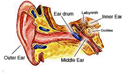 Emissions Testing Mesa Az >> Hearing Tests in Scottsdale and Mesa AZ | Advanced Hearing ...